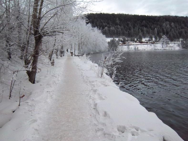 Прогулка у пруда